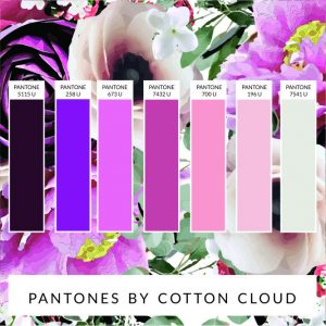 PANTONE COLOUR CHART PLUM AND PINK